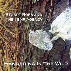 album-cover-idea
